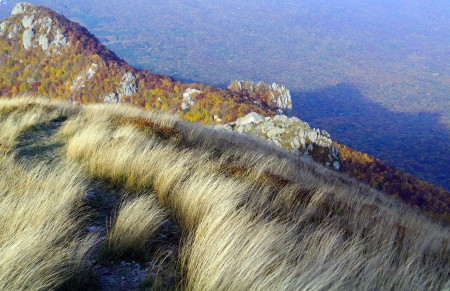 Feather-Grass on Rocks Mountains Forests background Stock Photo - 16251098
