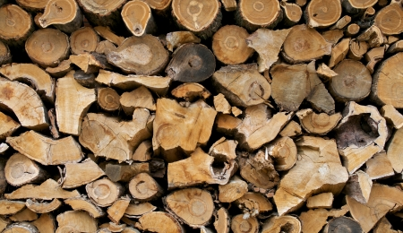 Stacked Firewood Background closeup outdoors Stock Photo - 16748609