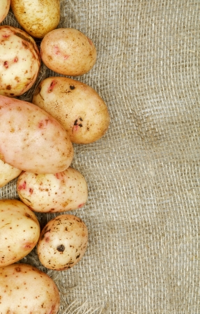 russet potato: Frame of Raw Potato closeup on Sacking background Stock Photo