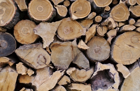 neatly stacked: Background of Neatly Stacked Firewood Logs closeup outdoors