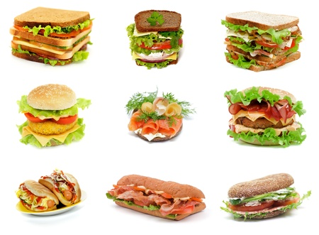 Collection with Ciabatta Sandwich, Big Turkey Meat Sandwich, Salmon Sandwich, Ham Sandwich, Double Cheeseburger, Sausage Sandwich, Two Hot Dogs,  Bacon Burger and Salchichone Sandwich isolated on white background