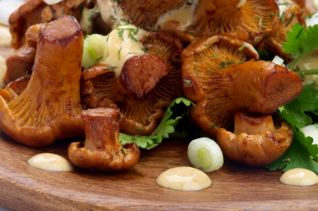 Delicious Roasted Edible Chanterelles Mushrooms with Cheese Sauce and Greens closeup on Wooden Plate Foto de archivo
