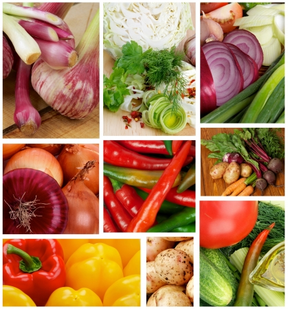 Collection of Various Raw Vegetables Backgrounds photo