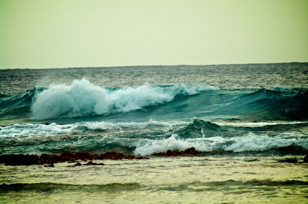 Splashing Waves Breaking Near Reef in Indian Ocean