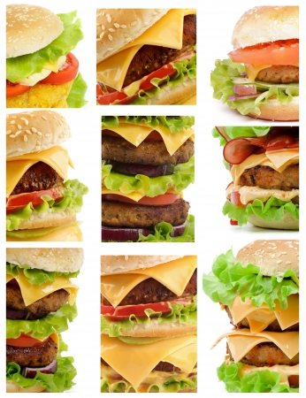 Collection of Various Beef, Cheese, Bacon and Chicken Burgers photo