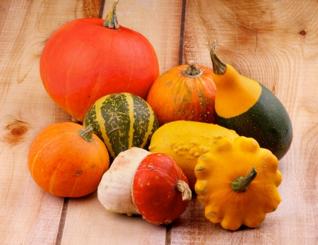 marrow squash: Heap of Various Marrow, Squash and Pumpkins on Wooden background