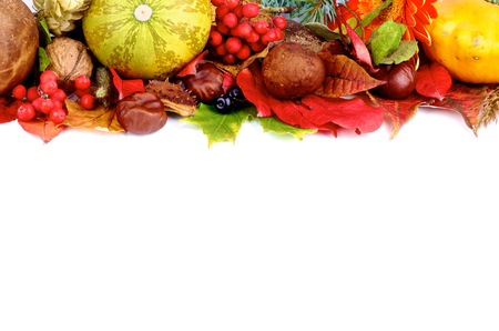 autumn harvest: Frame of Autumn Harvest with Vegetables, Berries, Mushrooms, Nuts and Various Leafs isolated on white background Stock Photo