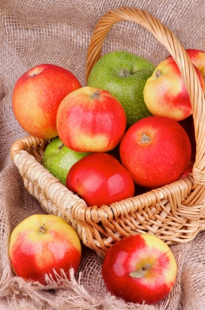 Arrangement of Various Ripe Autumn Apples in Wicker Basket on Sack cloth background  photo