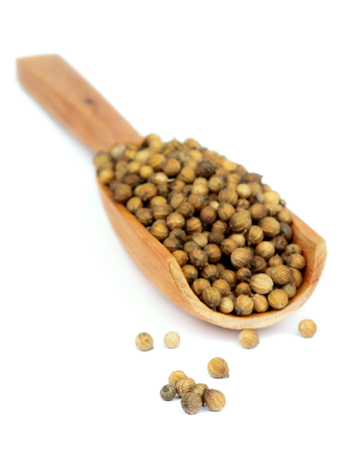 coriander seeds: Dried Coriander Seeds in Wooden Scoop isolated on white background