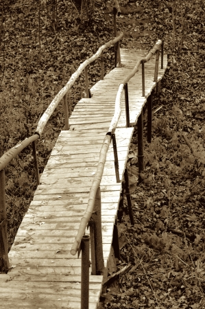 Old Rustic Wooden Foot Bridge in Ravine Outdoors  Toned Stock Photo