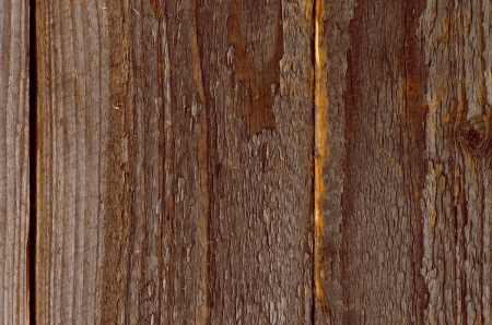 rustic  wood: Weathered Rustic Wood Background with Natural Texture closeup