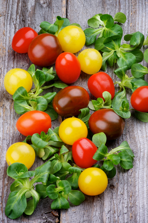 Arrangement of Red, Yellow and Brown Cherry Tomatoes with Fresh Picked Corn Salad on Rustic Wooden background photo