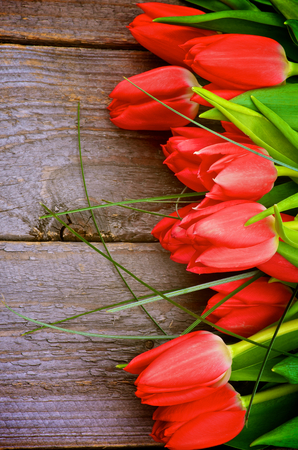 Border of Beautiful Spring Red Tulips with Green Grass isolated on Rustic Wooden background photo