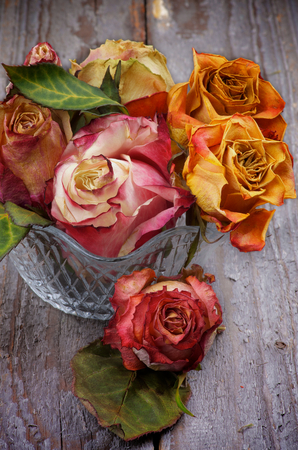 Bunch of Colorful Withered Roses in Glass Vase isolated on Rustic Wooden background photo