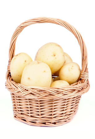 russet potato: Raw New Harvest Golden Potato in Wicker Basket isolated on white background