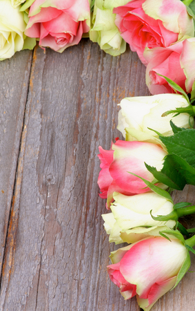 Corner Border of Beauty White-Green and Pink Roses closeup on Rustic Wooden background photo