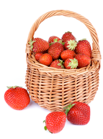 Fresh Ripe Forest Strawberries in Wicker Basket isolated on White background photo