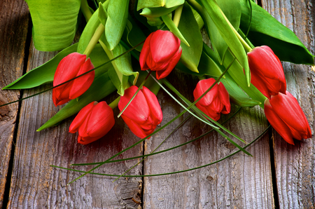 Heap of Seven Beautiful Spring Red Tulips with Green Grass isolated on Rustic Wooden background photo
