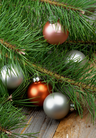 Christmas Decoration with Pastel Colored Baubles into Fluffy Green Pine Branches with Long Needles closeup on Rustic Wooden background photo
