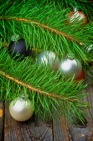 solver: Christmas Decoration with Solver, Black and Pink Baubles into Fluffy Green Pine Branches with Long Needles closeup on Rustic Wooden background Stock Photo