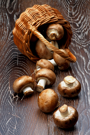 Fresh Raw Portabello Mushrooms Scattered from Wicker Basket closeup on Dark Wooden background photo