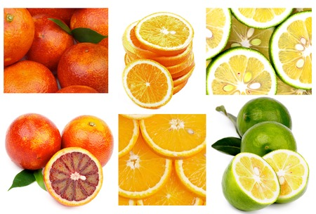 Collection of Citrus Fruits with Blood Oranges, Orange Fruits and Abkhazian Lemons Full Body, Slices and Backgrounds photo