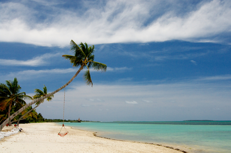 Palm Trees with Hammock in Indian Ocean Sand Beach on Blue Sky Background with White Clouds Outdoors photo