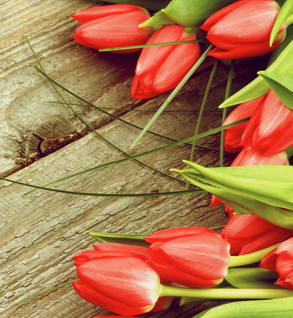 retro styled: Arrangement of Beautiful Spring Red Tulips with Green Grass on Rustic Wooden background. Retro Styled