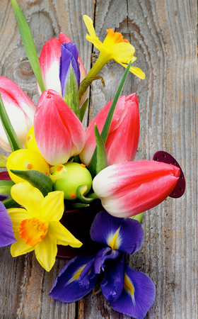 purple irises: Bunch with Yellow Daffodils, Magenta Tulips Purple Irises in Watering Can with Colored Easter Eggs closeup on Wooden background Stock Photo
