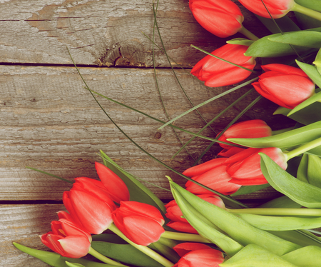 retro styled: Corner Frame of Beautiful Spring Red Tulips with Green Grass isolated on Rustic Wooden background. Retro Styled