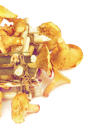 retro styled: Arrangement of Perfect Raw Chanterelles with Dry Leaf and Grass in Tree Branch Box closeup on White background. Retro Styled