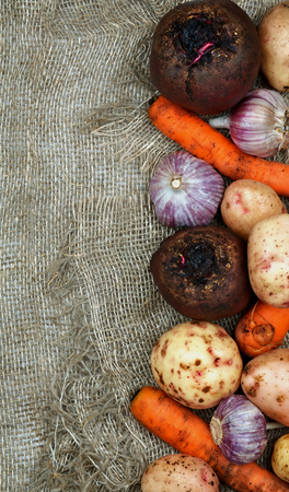 russet potato: Frame of Raw Vegetables with Potatoes, Garlic, Carrots and Beets closeup on Sacking background. Top View