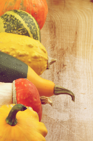 marrow squash: Frame of Various Miniature Pumpkin, Squash and Marrow closeup on Wooden background. Retro Styled