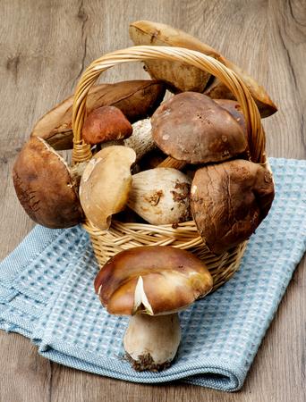 peppery: Heap of Fresh Ripe Porcini Mushrooms, Orange-Cap Boletus and Peppery Bolete in Wicker Basket closeup on Textured Wooden background