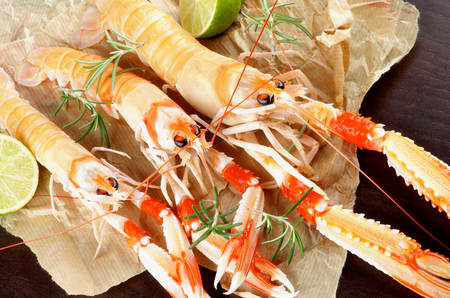 raw lobster: Delicious Raw Langoustines with Lime and Rosemary on Parchment Paper closeup. Top View Stock Photo