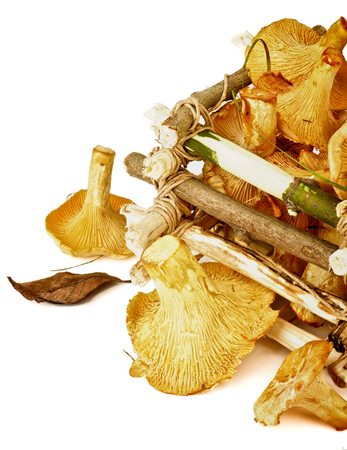 dry leaf: Perfect Raw Chanterelles with Dry Leaf and Grass in Tree Branch Box isolated on White background. Retro Styled