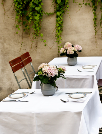 creepers: Rustic Celebratory Table Setting with Elegant Plates, Silverware and Bunch of Pink Flowers in Tin Pots closeup on Stone Wall background with Creepers Outdoors. Focus on Foreground Stock Photo