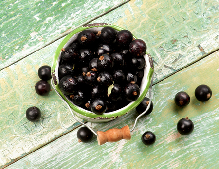 blackcurrant: Fresh Berries of Blackcurrant in White Garden Bucket closeup on Cracked Wooden background. Top View
