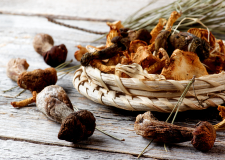 Arrangement of Forest Dried Mushrooms with Chanterelles, Porcini, Boletus Mushrooms and Dry Stems closeup Rustic Wooden background. Focus on Foreground Stock Photo