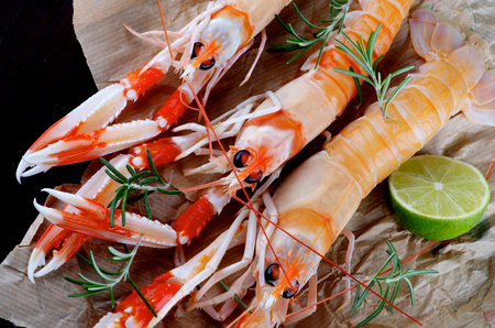 prepared shellfish: Three Delicious Raw Langoustines with Lime and Rosemary Cross Section on Parchment Paper Stock Photo