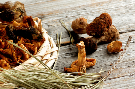 Arrangement of Forest Dried Mushrooms with Chanterelles, Porcini, Boletus Mushrooms and Dry Fir Branch closeup on Rustic Wooden background. Focus on Chanterelle