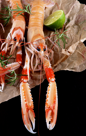 Delicious Raw Langoustines with Half of Lime and Rosemary on Parchment Paper closeup on Dark Wooden background