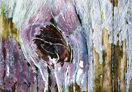 Background of Knotted Wood with with Timber Knots and Old Cracked Paint closeup Stock Photo