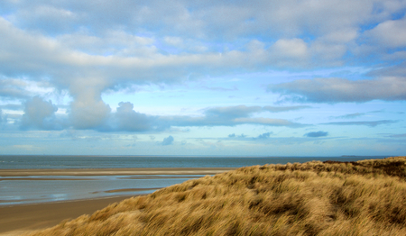 Landscape with Dry Dune Grass on Blue Cloudy Sky background Outdoors. Nationalpark Duinen van Texel, Texel Island, Netherlands