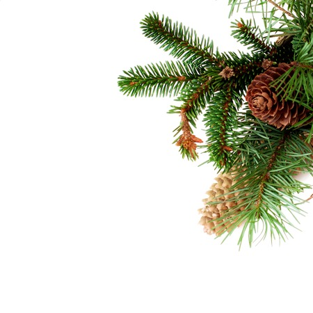 Christmas and New Year Corner with Fluffy Fir Branches and Cones isolated on White background Standard-Bild - 116173979