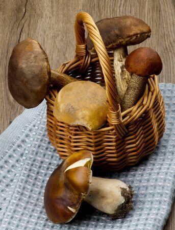Wicker Basket with Various Raw Porcini Mushrooms and Orange-Cap Boletus on Blue Napkin closeup on Wooden background