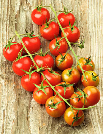 Two Ripe Raw Branches of Cherry Tomatoes closeup on Rustic Wooden background Foto de archivo
