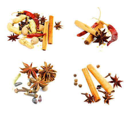 Collection of Sweet Spices with Cinnamon Sticks, Anise Stars, Chili Peppers, Cardamon and Cloves isolated on White background