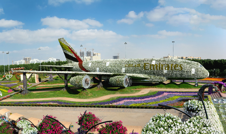 DUBAI, UAE - DECEMBER 8, 2016: Dubai Miracle Garden: The worlds biggest natural flower garden. Structure forming the shape of the Airbus A380. Editorial