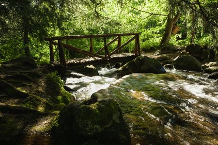 Vitosha Natural Park near Sofia, Bulgaria. The Golden Bridges area. Water stream and wooden bridge landscape. Stock Photo